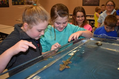 The WAVE on Wheels Outreach Program from the Newport Aquarium brought live sharks to AES on Thursday, January 25th!