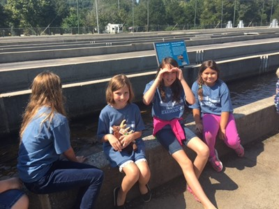 On Wednesday, September 19th, AES third graders visited Wolf Creek Dam and National Fish Hatchery.