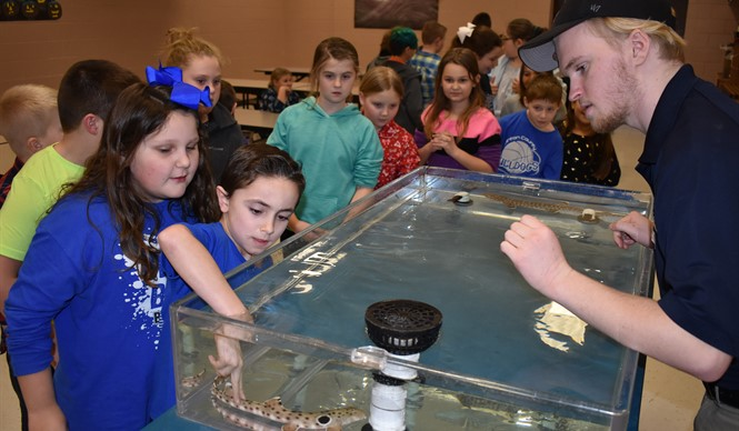 AES Gifted & Talented students had an up-close encounter with sharks during a WAVE on Wheels outreach program from the Newport Aquarium.